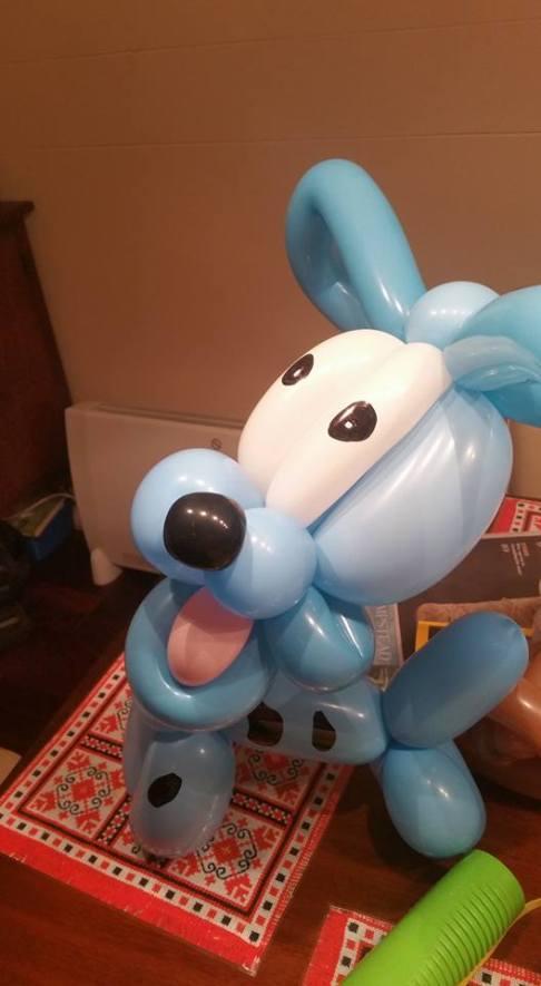 Not your average balloon dog..